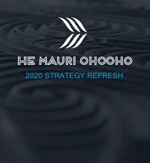 HMO Strategy Refresh